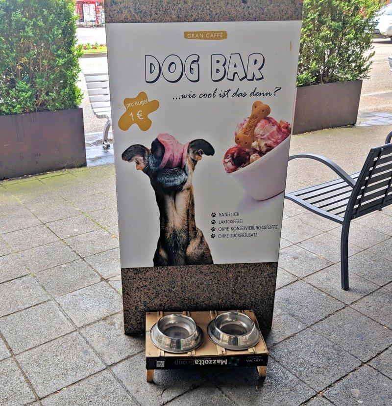 Hot or Not? Bruchsaler Eisdiele verkauft Eis für Hunde